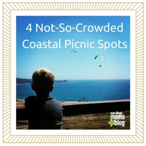 4 Not-So-Crowded Coastal Picnic Spots