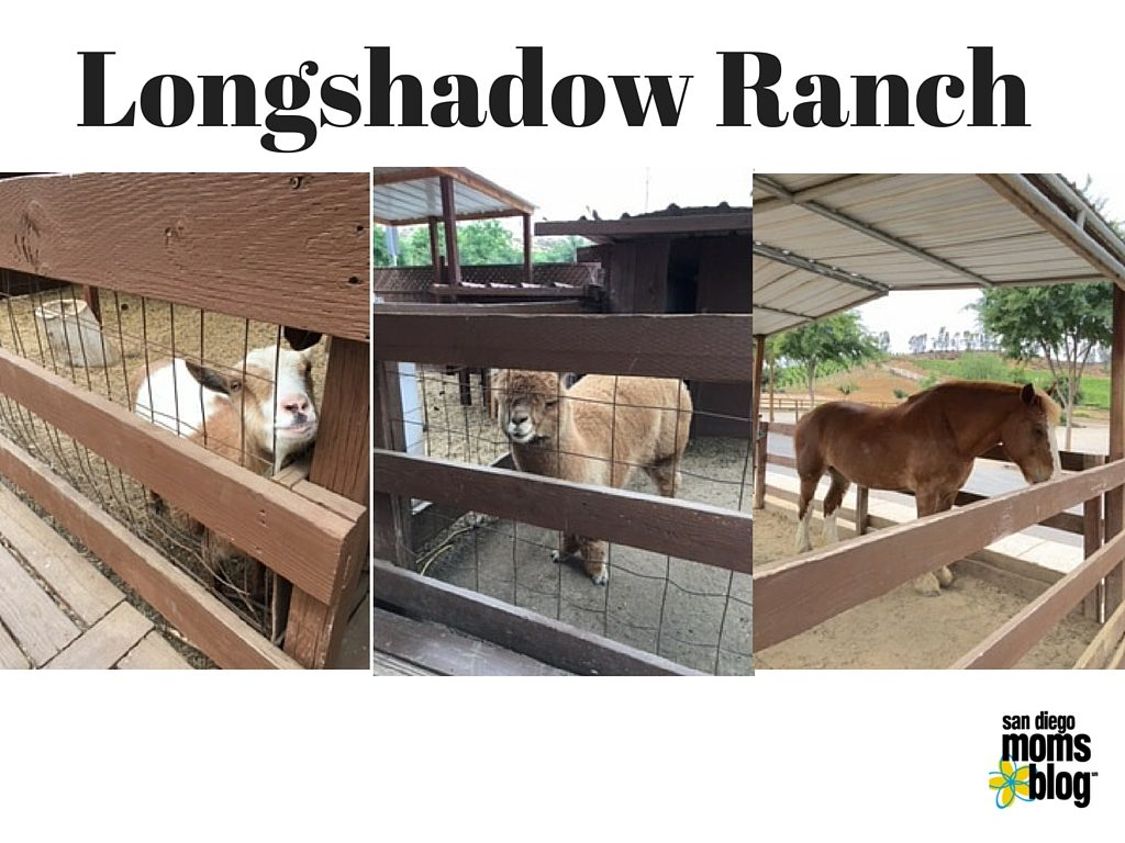 Long Shadow Ranch temecula winery