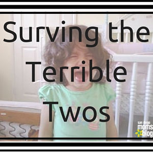 Surving the Terrible Twos