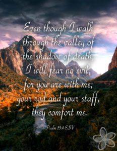 psalm-23-image