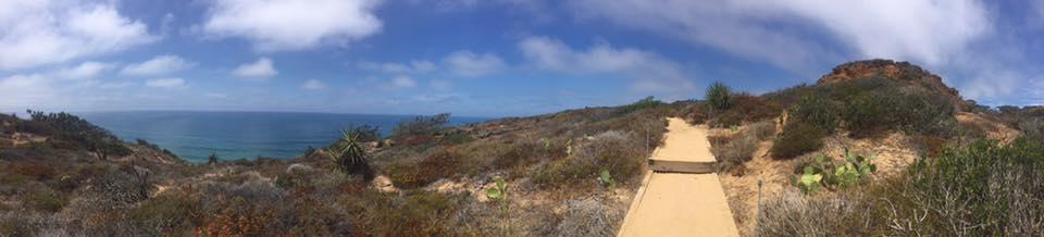 torrey pines highway 101 pacific coast