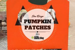 OCTOBER fall pumpkin patches