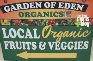 Leader Follower Organic Food