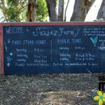 Exploring San Diego: A Visit to Suzie's Farm