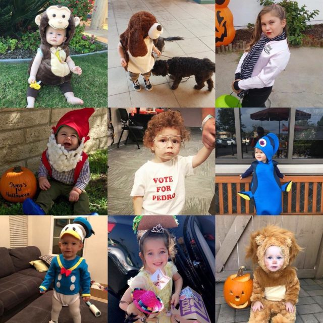 VOTE!!! These cuties are just 9 of over 60 SDMBCostumeContesthellip