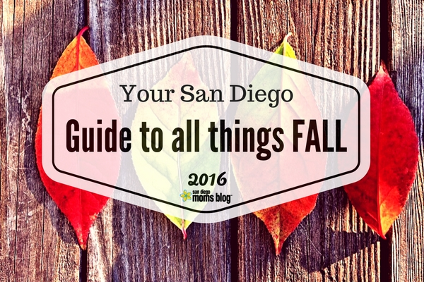 san diego guide to fall