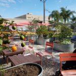 ChuckAlek Biergarten : Family and Community Friendly {Guest Post}
