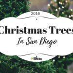 Christmas Tree in San Diego