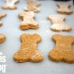 Easy Thanksgiving Dog Treats for your Furry Friends