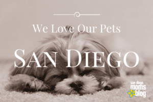 San Diegans love their pets