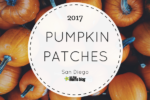 fall guide pumpkin patches
