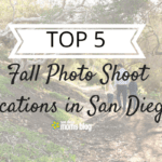 Top 5 Fall Locations in San Diego for Family Photos (Plus Other Photo Tips!)