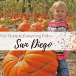 San Diego Moms Ultimate Guide to Fall 2017