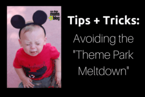 Tips + Tricks- Avoiding the -Theme Park Meltdown- (1)