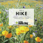 Take a Hike: A Parent's Guide to Native Southern California Plants