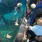 Learning About More Than Animals at the Zoo – Meeting Children with Special Needs