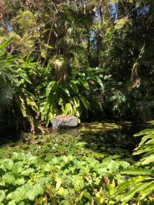 botanical garden in encinitas