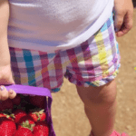 Five Things You Need To Know About Strawberry Picking