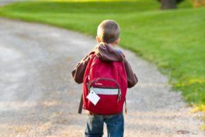 back-view-backpack-bag-207697