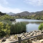4 Family Favorite Activities in North County San Diego