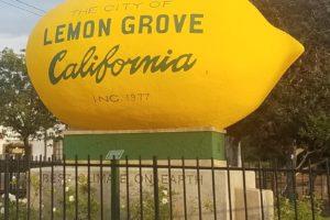 lemongrovelemon
