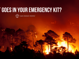 What goes in your emergency kit