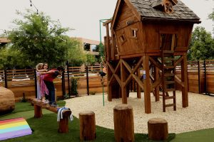 my yard live play area