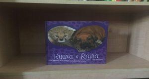 Ruuxa and Raina displayed on a bookshelf