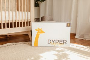 Dyper Delivery Box