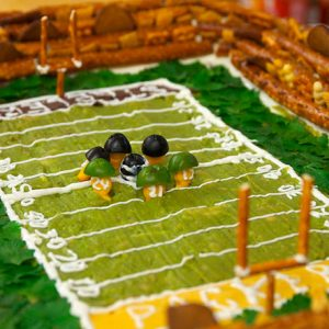 20110131-stadium-primary