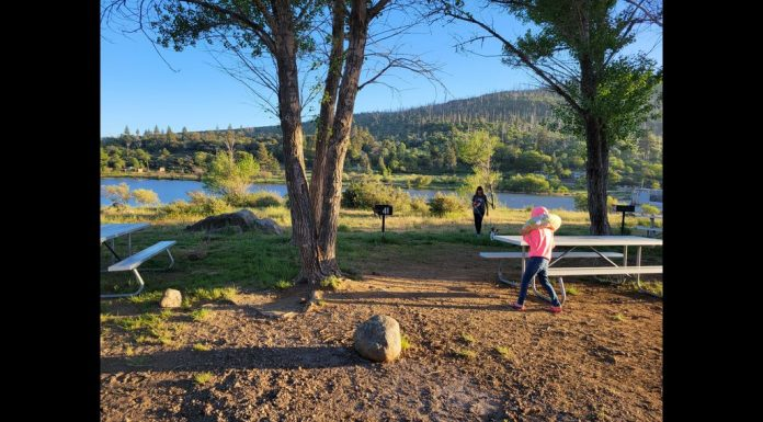 Sunshine at Campsite