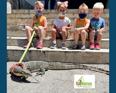 Reptile with kids